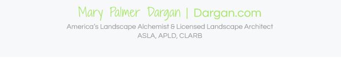 DarganB1